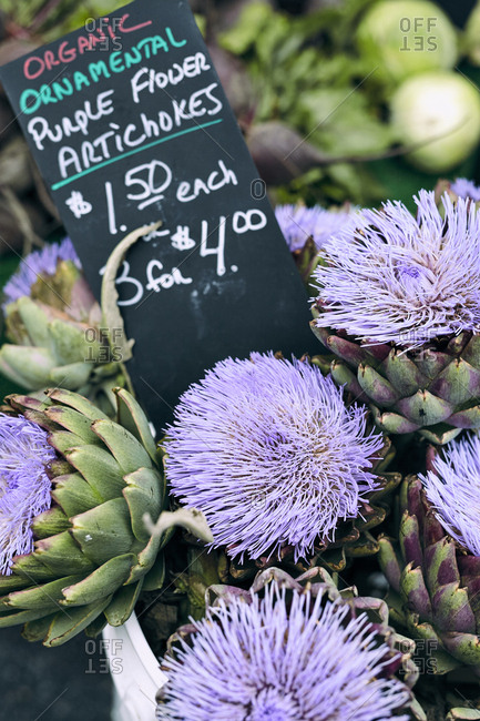 Purple flower artichokes for sale at farmers' market