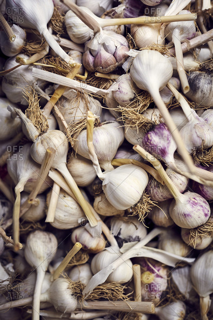 Dried garlic at farmers' market