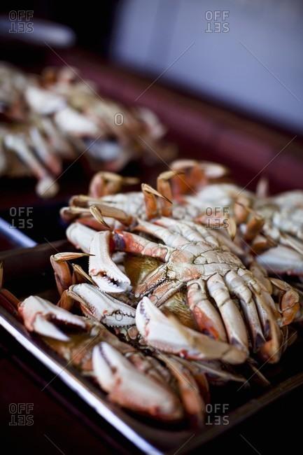 Fresh Whole Crab