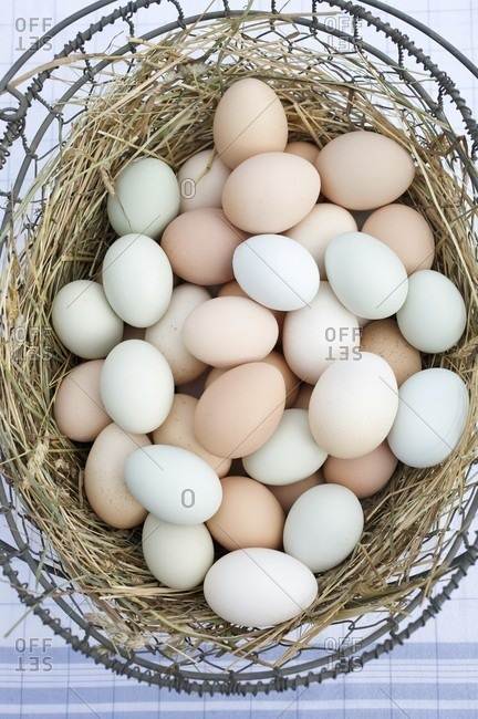 Wire Basket of Assorted Free Range Organic Farm Eggs