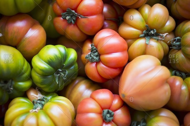 Various beefsteak tomatoes (seen from above)