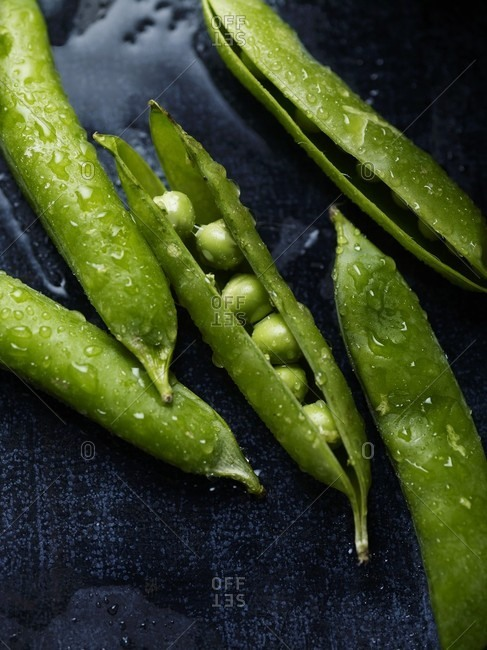 Freshly washed pea pods