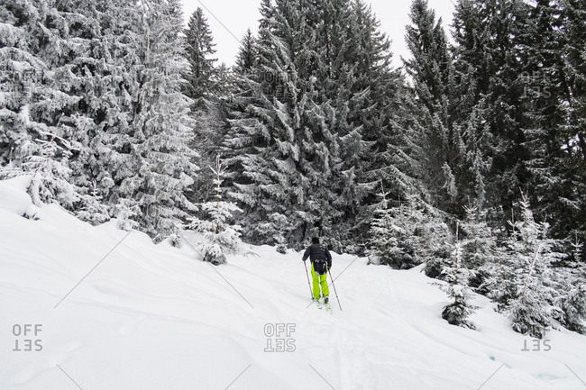 Backcountry Skier going through the forest in the French Alps