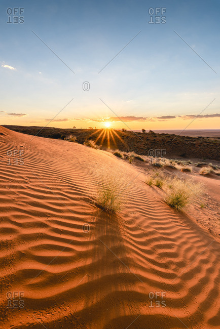 Namib-Naukluft National Park, Namibia, Africa. Ripples of sand on a petrified dune at sunset.