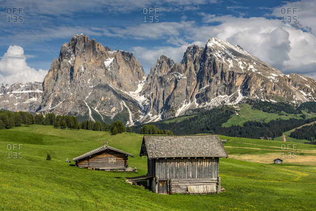 Alpe di Siusi - Seiser Alm with Sassolungo - Langkofel mountain group in the background, Trentino Alto Adige - South Tyrol, Italy