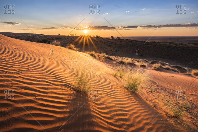 Namib-Naukluft National Park, Namibia, Africa. Ripples of sand on a petrified dune at sunset