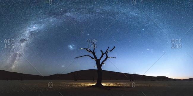 Deadvlei, Namib-Naukluft National Park, Namibia, Africa. Dead acacia trees at night