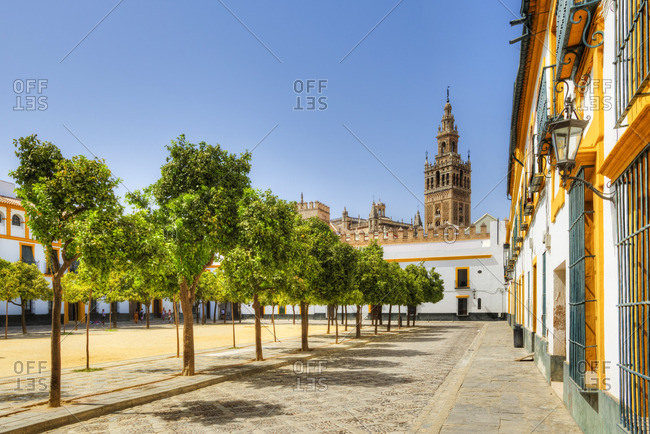 Court of Banderas with the Giralda tower of the Cathedral, UNESCO World Heritage Site, Sevilla, Andalusia, Spain