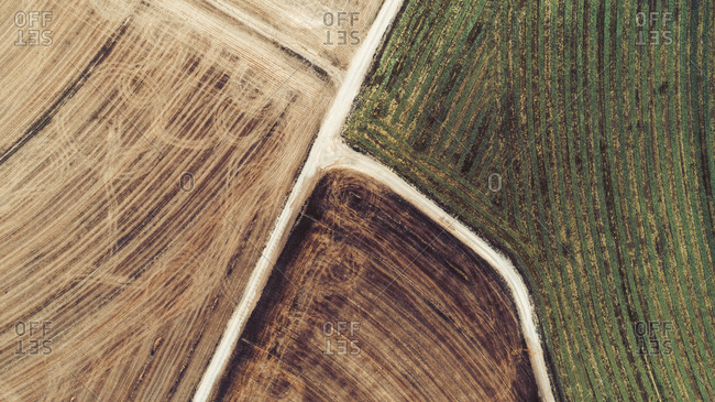 Aerial view of diverting road amid cultivated land, Lleida, Spain