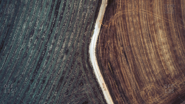 Aerial view of cultivated land and dirt road, Lleida, Spain