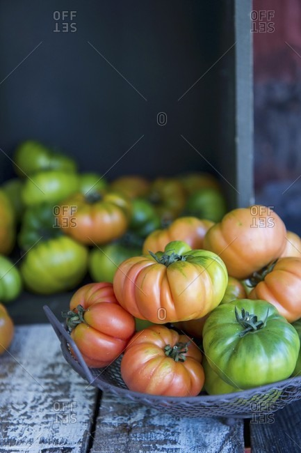 Merinda tomatoes in a wire basket