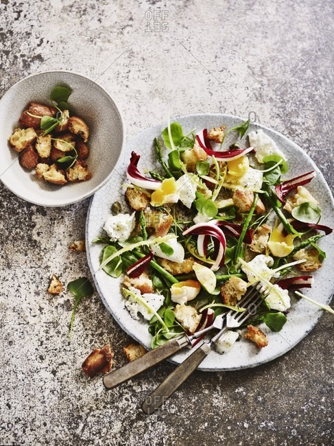 Bread salad with mozzarella - Offset
