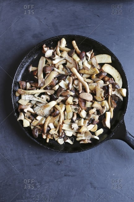 A pan on mixed mushrooms including king trumpet, piopinni, maitake, shiitake, oyster and matsutake mushrooms