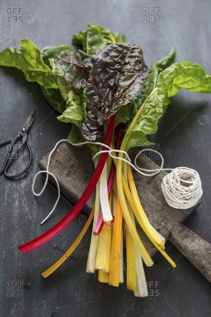 Rainbow chard from the Offset Collection