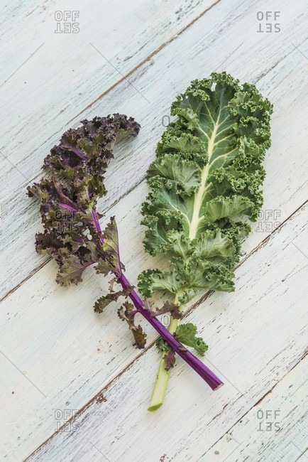 A green kale leaf and a purple kale leaf on a wooden surface