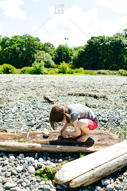 Little girl playing with driftwood on a beach