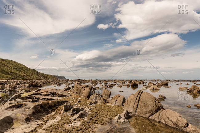 Rocky coast in Hawke's Bay, New Zealand