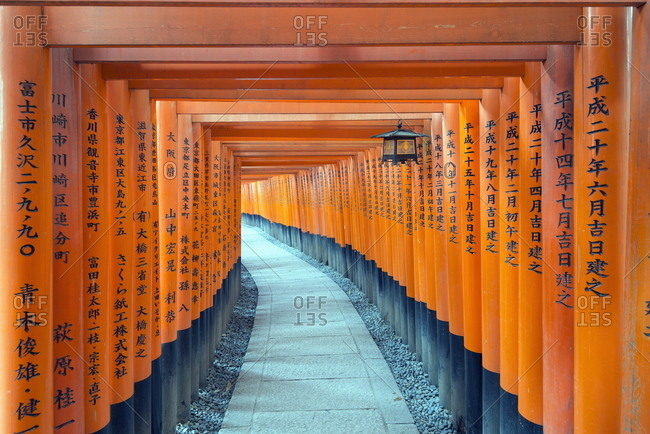November 20, 2013: Torii gate at Fushimi Inari Jinja, Shinto shrine, UNESCO World Heritage Site, Kyoto, Honshu, Japan, Asia