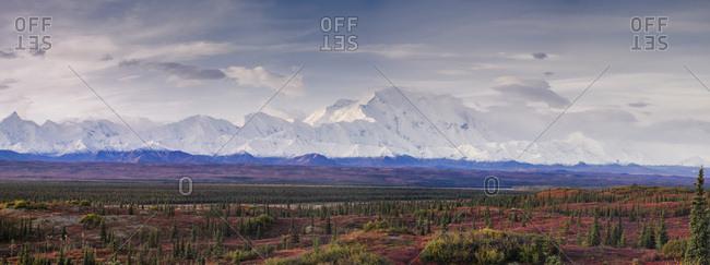 Panoramic landscape of the Denali Mountain (Mount McKinley), Denali National Park, Alaska, United States of america, North America