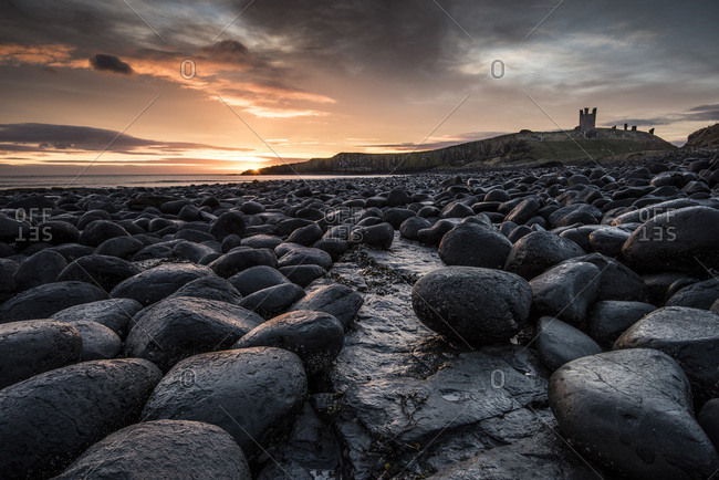 Dawn light reflecting on the rocks at Dunstanburgh Castle on the North East Coast, Northumberland, England, United Kingdom, Europe