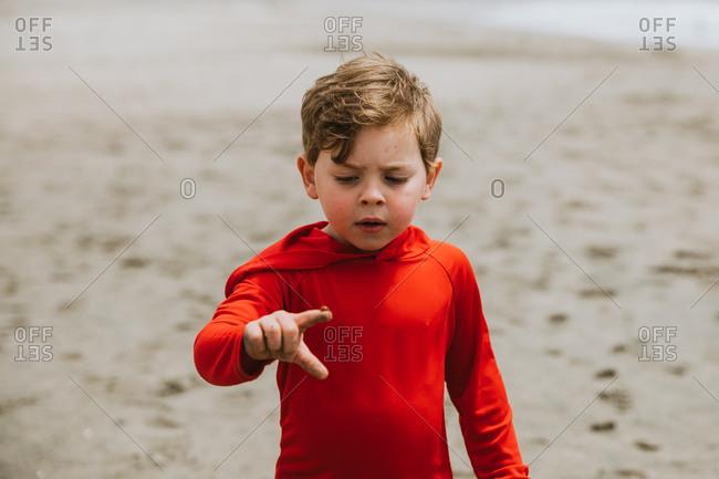 Boy holding ladybug on finger on a beach