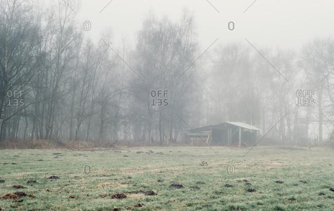 Old barn in a foggy field