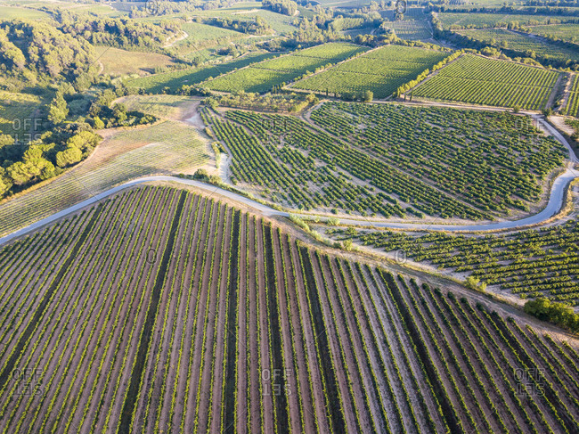 Aerial view of the viticultural fields and road of the Catalan region of Penedes wines in the province of Barcelona in Catalonia Spain