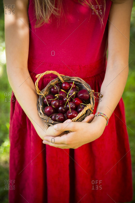 Little girl holding basket with cherries