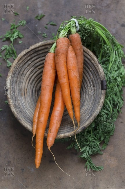 A bundle of carrots in a bowl