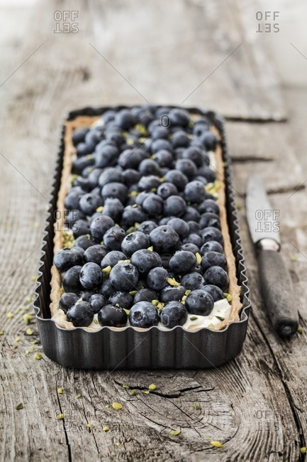 Blueberry Pie from the Offset Collection