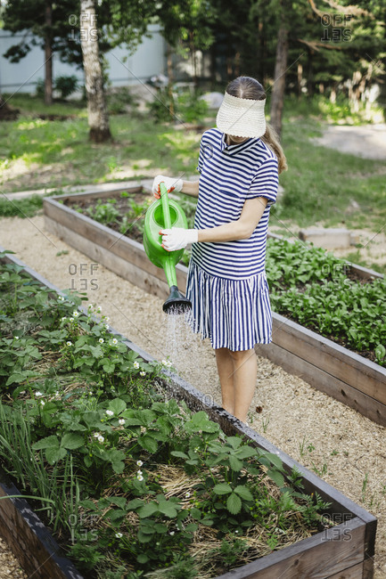 Woman wearing striped dress and visor watering plants in a garden