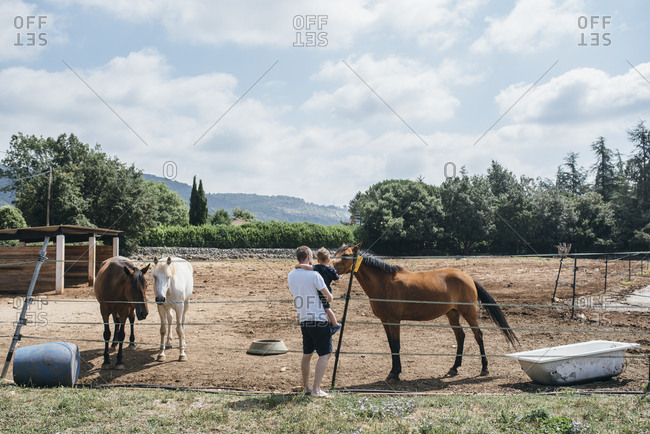 Father and son meeting a horse