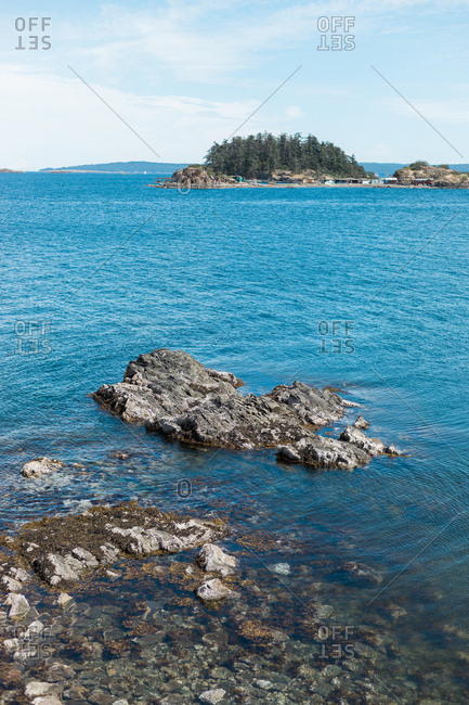 View of crystal clear water and tall trees on an island