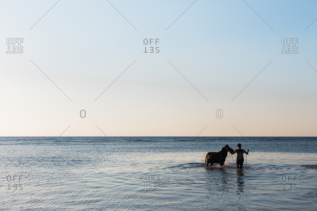 A man washes his horse in the ocean
