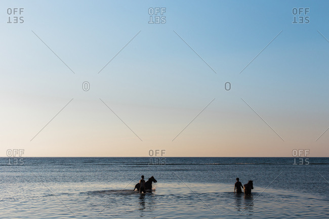 Men wash their horses in the ocean