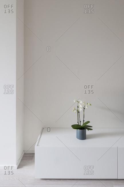 Corner of modern minimalist space
