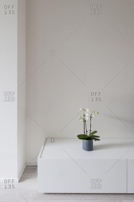 Corner of modern minimalist space