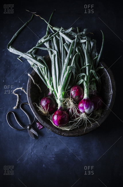 Spring onions in a vintage bowl