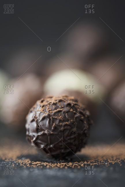 Praline truffles with cocoa powder