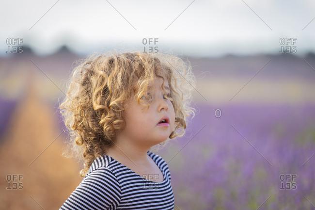Adorable little girl in purple lavender field