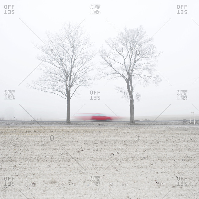 Blurred motion shot of a red car speeding through the bare trees