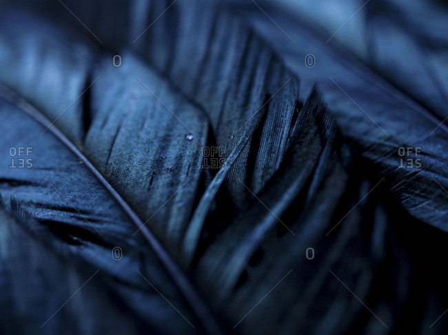 Detailed shot of blue material in selective focus