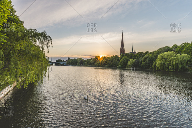 Germany- Hamburg- Kuhmuehlenteich- mute swan and view to church St. Gertrud