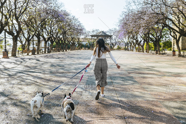 Spain- Andalusia- Jerez de la Frontera- Woman running with two dogs on square