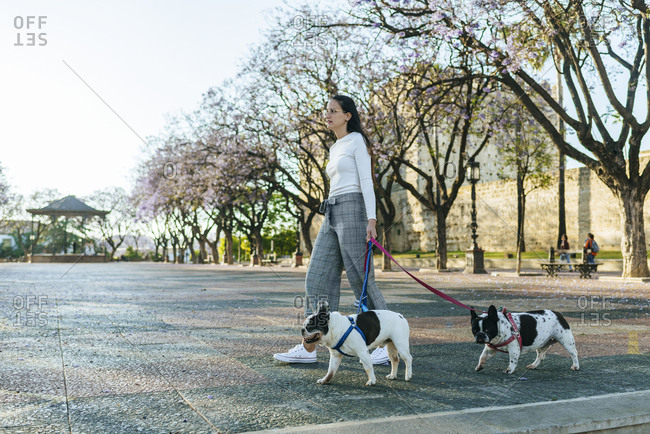 Spain- Andalusia- Jerez de la Frontera- Woman walking with two dogs on square