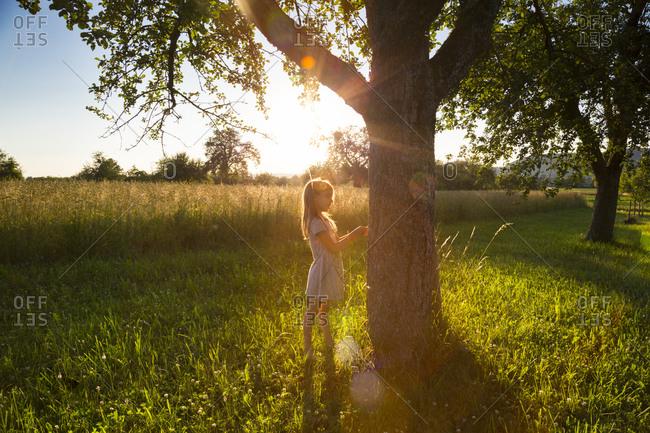 Young girl standing at tree against evening sun in summer