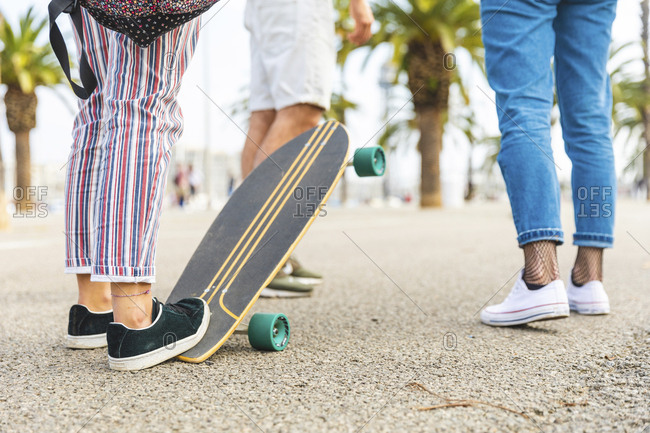 Close-up of friends with a skateboard on a promenade with palms