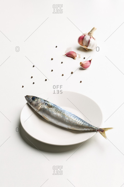 Mackerel on white plate, garlic and pepper. Minimalist composition