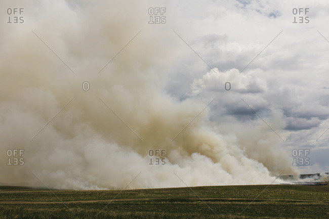 Smoke from controlled burn on farmland, seasonal burns to clear stubble