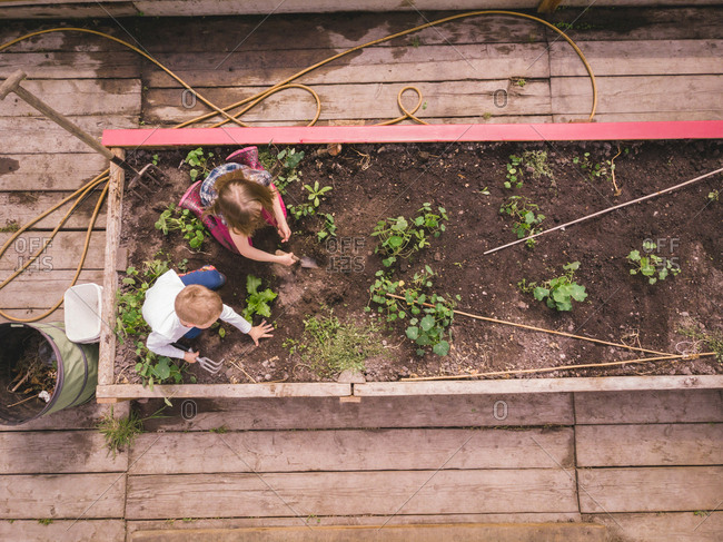 Kids gardening together in greenhouse